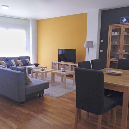 Bardenas Arguedas Ciguena de Arguedas Apartamento 2020 7